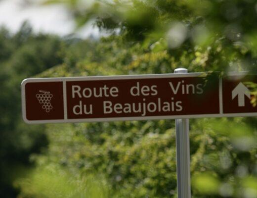 Vine Routes