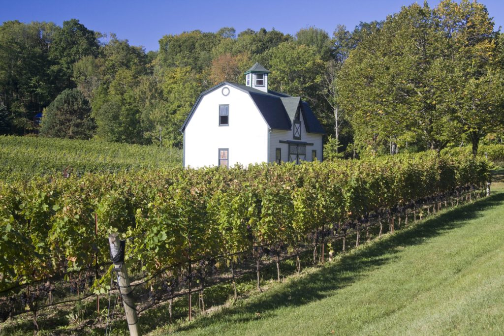 Hidden Bench Estate Winery - Sustainable Winery