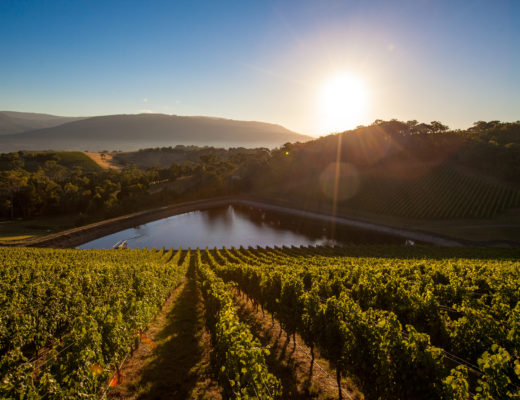 Jackson Family Wines acquires Giant Steps Winery